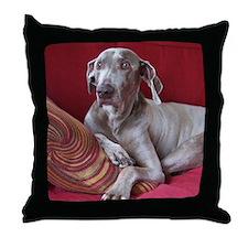 Weinaraner Throw Pillow