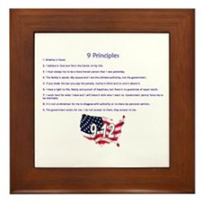 9 Principles 12 Values Framed Tile