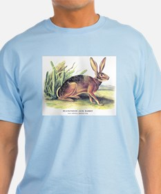 Audubon Jack Rabbit Animal T-Shirt