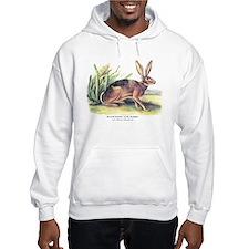 Audubon Jack Rabbit Animal (Front) Hoodie Sweatshirt