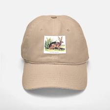 Audubon Jack Rabbit Animal Baseball Baseball Cap