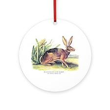 Audubon Jack Rabbit Animal Ornament (Round)