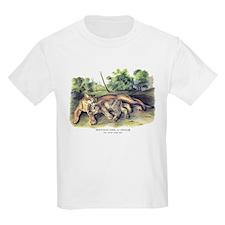 Audubon Cougar Cat Animal (Front) T-Shirt