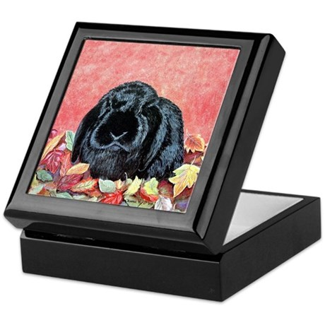 Autumn Holland Lop Keepsake Box