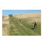 3 Collies Postcards (Package of 8)