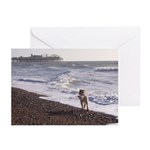 Dog on Brighton Beach Greeting Cards (Pk of 10)