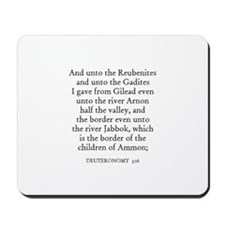 DEUTERONOMY  3:16 Mousepad