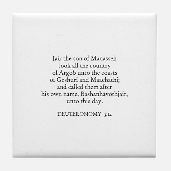 DEUTERONOMY  3:14 Tile Coaster