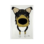 Big Nose Smooth Collie Rectangle Magnet (10 pack)