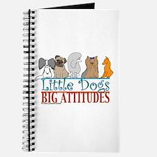Big Attitudes Journal
