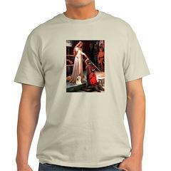 Accolade / Lhasa Apso #4 T-Shirt