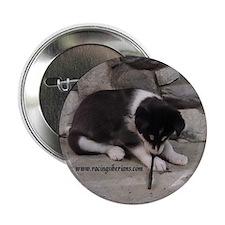 MCK Racing Siberians Pup Writing Button