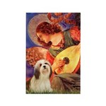 Mandolin / Lhasa Apso #4 Rectangle Magnet (10 pack