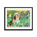 Irises / Lhasa Apso #4 Framed Panel Print