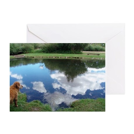 Reflections Blank Cards (Pk of 20)