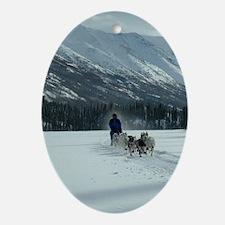 Christmas Yukon Team Oval Ornament
