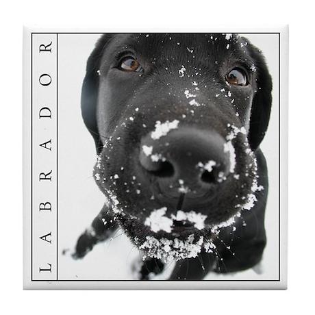 Classic Tile Coaster, Black Lab in Snow