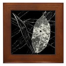 Leaf Lace And Glass - Framed Tile