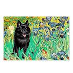 Irises / Schipperke #2 Postcards (Package of 8)