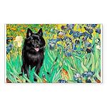 Irises / Schipperke #2 Sticker (Rectangle)