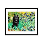 Irises / Schipperke #2 Framed Panel Print