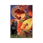 Mandolin / Schipperke #5 Rectangle Magnet (10 pack