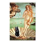Venus / Schipperke #5 Postcards (Package of 8)