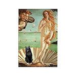 Venus / Schipperke #5 Rectangle Magnet (100 pack)