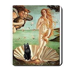 Venus / Schipperke #5 Mousepad