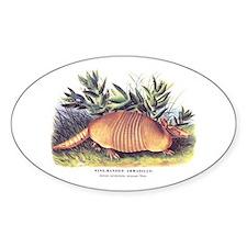 Audubon Armadillo Animal Oval Decal