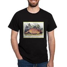 Audubon Armadillo Animal (Front) T-Shirt