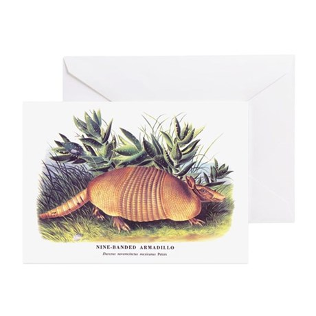 Audubon Armadillo Animal Greeting Cards (Pk of 10)