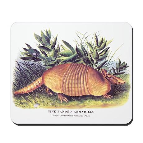 Audubon Armadillo Animal Mousepad