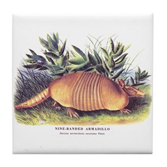 Audubon Armadillo Animal Tile Coaster