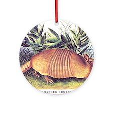 Audubon Armadillo Animal Ornament (Round)