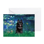 Lilies / Schipperke #4 Greeting Cards (Pk of 20)