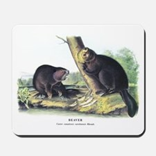 Audubon Beaver Animal Mousepad