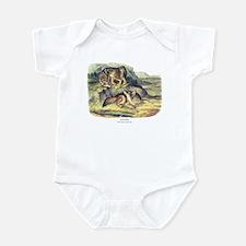 Audubon Coyote Animal Infant Bodysuit