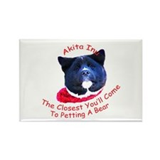 Petting a Bear Rectangle Magnet (10 pack)