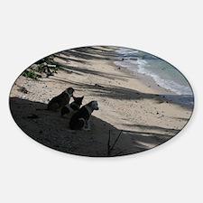 paradise,nature,samoa Oval Decal