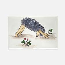 Downward Facing Yoga Hedgehog Rectangle Magnet