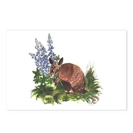 Armadillo with Bluebonnets Postcards (Package of 8