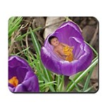Crocus Flower Baby Mousepad