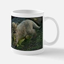 Mountain Lion Kitten Mug