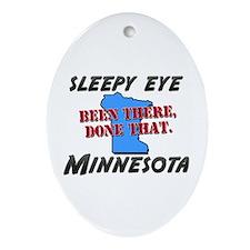 sleepy eye minnesota - been there, done that Ornam