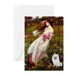 Windflowers / Eskimo Spitz #1 Greeting Cards (Pk o