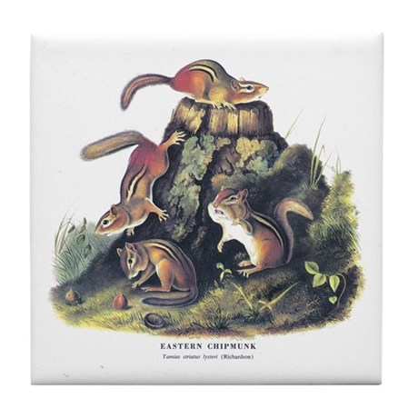 Audubon Chipmunk Animal Tile Coaster