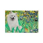 Irises / Eskimo Spitz #1 Rectangle Magnet (10 pack