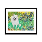 Irises / Eskimo Spitz #1 Framed Panel Print