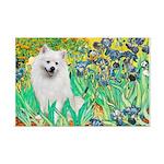 Irises / Eskimo Spitz #1 Mini Poster Print